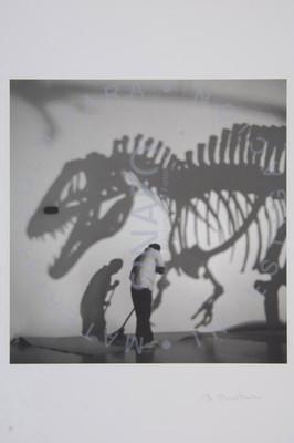 El Acecho del velociraptor