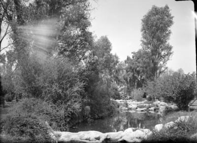 Pequeñas cascadas en el prado norte a la entrada del bosque