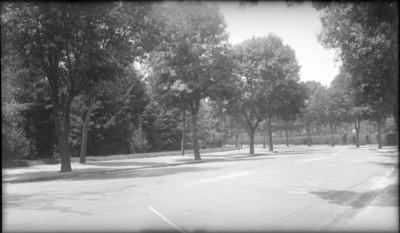 Tramo de la calzada a la entrada del Bosque de Chapultepec