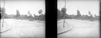 Gran avenida del bosque de Chapultepec lado norte, estereoscópica