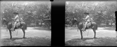 Fregoso en el caballo árabe, retrato, estereoscópica