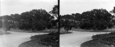 Jardín botánico en Chapultepec, de la entrada hacia el suroeste, estereoscópica