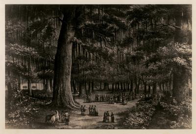 La glorieta en el interior del Bosque de Chapultepec, reprografía de una litografía de Casimiro Castro