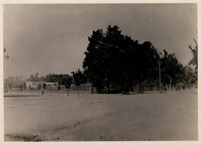 Aspecto de la gran reja de hierro que limita al Bosque en el frente y casas que fueron demolidas