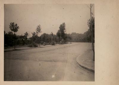 Parte de la gran avenida del Bosque de Chapultepec