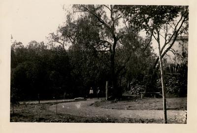 Calzada para peatones cerca de la alberca en el Bosque