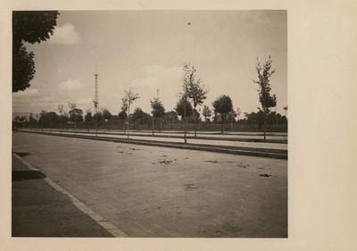 Gran calzada recta en el Bosque de Chapultepec