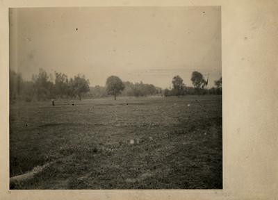 Aspecto del prado abierto junto al lago
