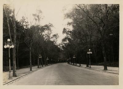 Gran avenida curva, cercana a la Calzada del Rey