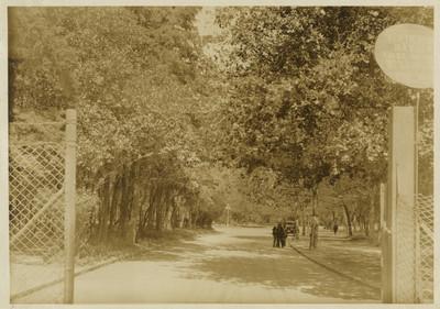 Calzada de la entrada del Bosque de Chapultepec