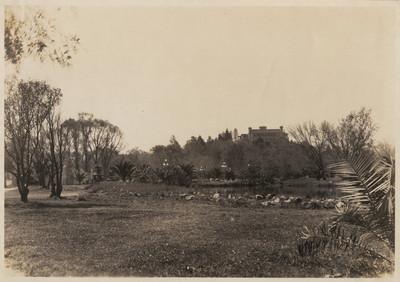 Detalle del prado sur del Bosque de Chapultepec