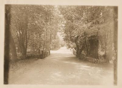 Avenida con cercas de madera en Chapultepec