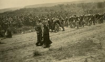 Tropa zapatista camina por un cultivo de maíz