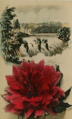 Flor y caídas de agua, tarjeta postal
