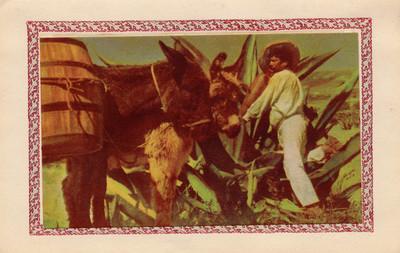 """""""Típico tlachiquero"""", tarjeta navideñaq"""