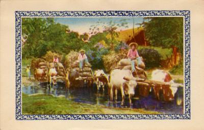 Hombres conducen animales con carga, tarjeta navideña