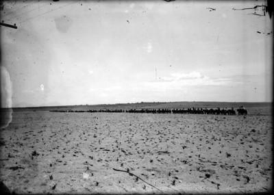 Tropas de la División del Norte avanzan rumbo a Torreón