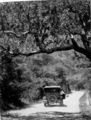 Hombre abordo de un automóvil, transita por un camino de terracería