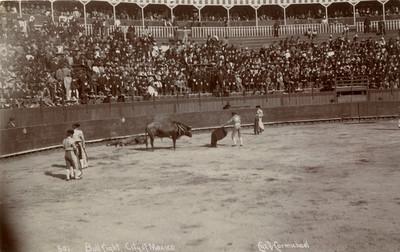 """Vista parcial de una corrida de Toros, """"Bull fight city of México"""""""