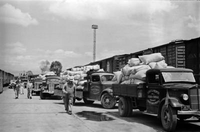 Camiones de carga transportan artículos de primera necesidad