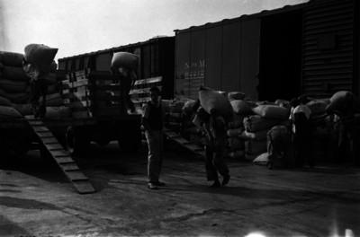 Trabajadores pasando la mercancía de un ferrocarril a camionetas