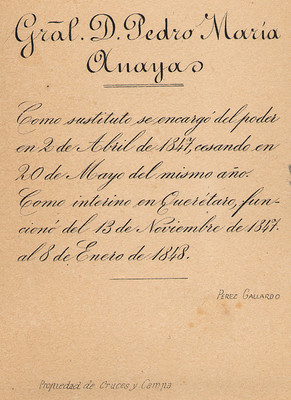 Pedro María Anaya, retrato