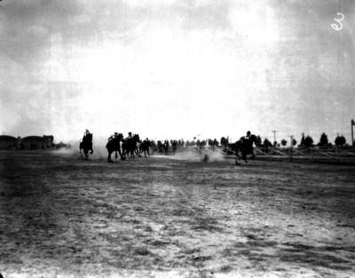 Carrera de caballos en el campo