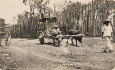 A corn cart in Oaxaca