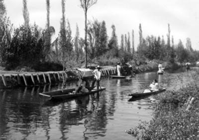 Canal con tránsito de trajineras