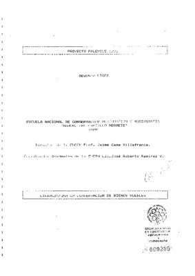 Proyecto Palenque 1991