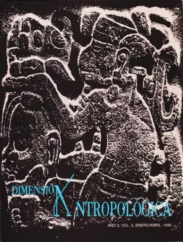 Dimensión Antropológica Vol. 3 (1995)