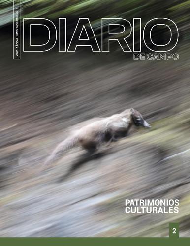 Diario de Campo -  Num. 2 (2017) Patrimonios culturales (Cuarta época)