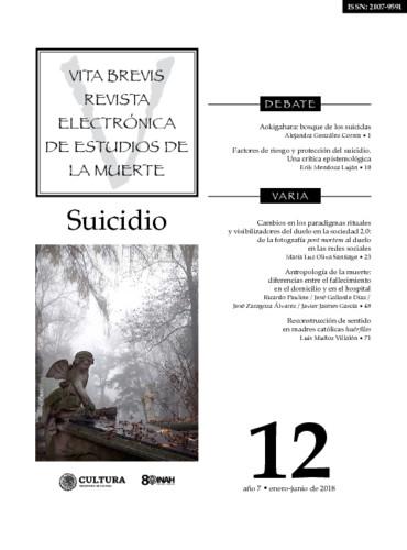 Vita Brevis Num. 12 (2018) Suicidio