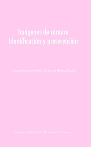 Imágenes de cámara, identificación y preservación