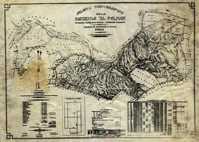 """Plano topográfico de la Hacienda """"El Palmar"""""""