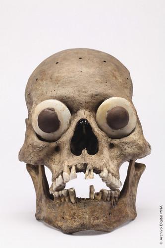 Cráneo trabajado y/o decorado