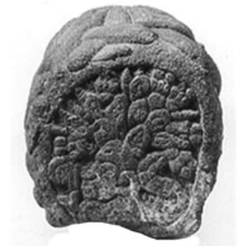 Escultura fitomorfa