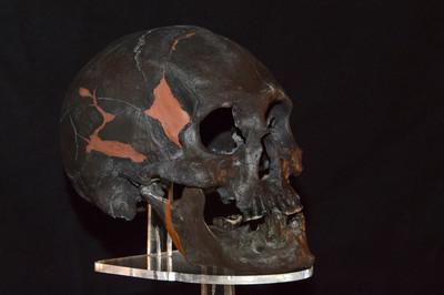 Cráneo del Hombre de Chimalhuacán