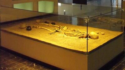 Esqueleto antropomorfo