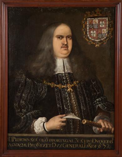 Virrey Pedro Nuño Colón de Portugal y Castro