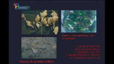 Mesa 1 Registro y exploración del patrimonio arqueológico y paleontológico