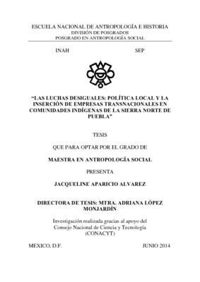 Las luchas desiguales : política local y la  inserción de empresas transnacionales en comunidades indígenas de la sierra norte d