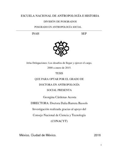 Jefas delegaciones : los desafios de llegar y ejercer el cargo, 2000 a enero de 2015