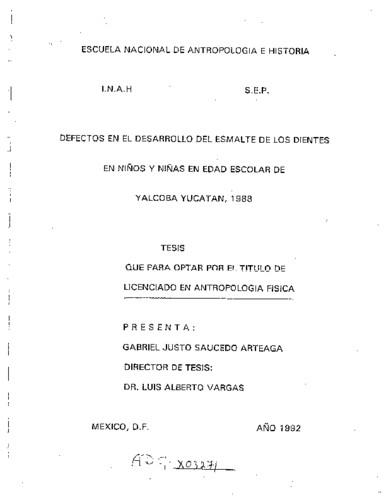Defectos en el desarrollo del esmalte de los dientes en niños y niñas en edad escolar de Yalcoba, Yucatán, 1988