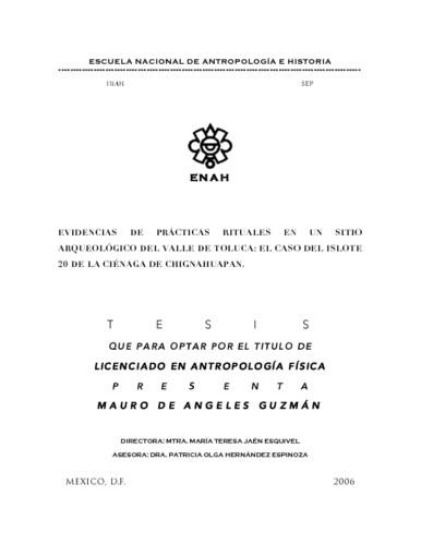 Evidencias de prácticas rituales en un sitio arqueológico del Valle de  Toluca: el caso del islote 20 de la ciénaga de Chignahuapan