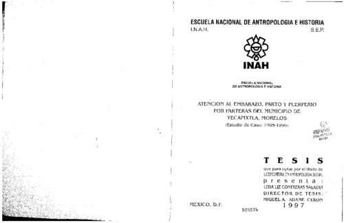 Atención al embarazo, parto y puerperio por parteras del municipio de Yecapixtla, Morelos  (Estudio de caso, 1995-1996)