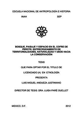 Bosque, paisaje y espacio en el Cofre de Perote: entrecruzamiento de territorialidades, naturaleza y usos hacia la conservación