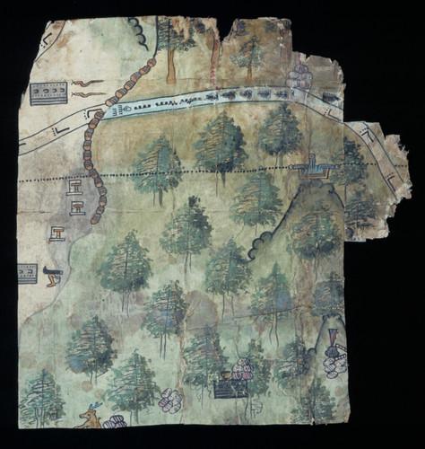 Mapa de una región boscosa