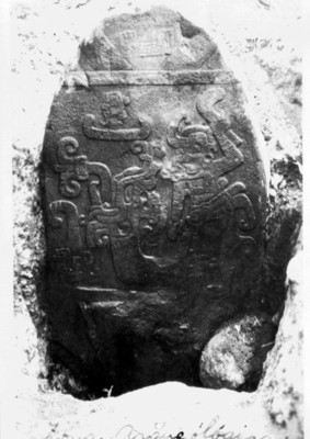 Estela 3 de Izapa, vista frontal, reprografía