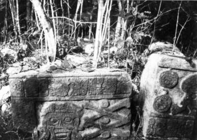 Fragmento de un relieve con un cráneo descarnado, detalle